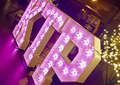 Birthday party name in large lighted letters with 6ft illuminated cherry blossom trees in background